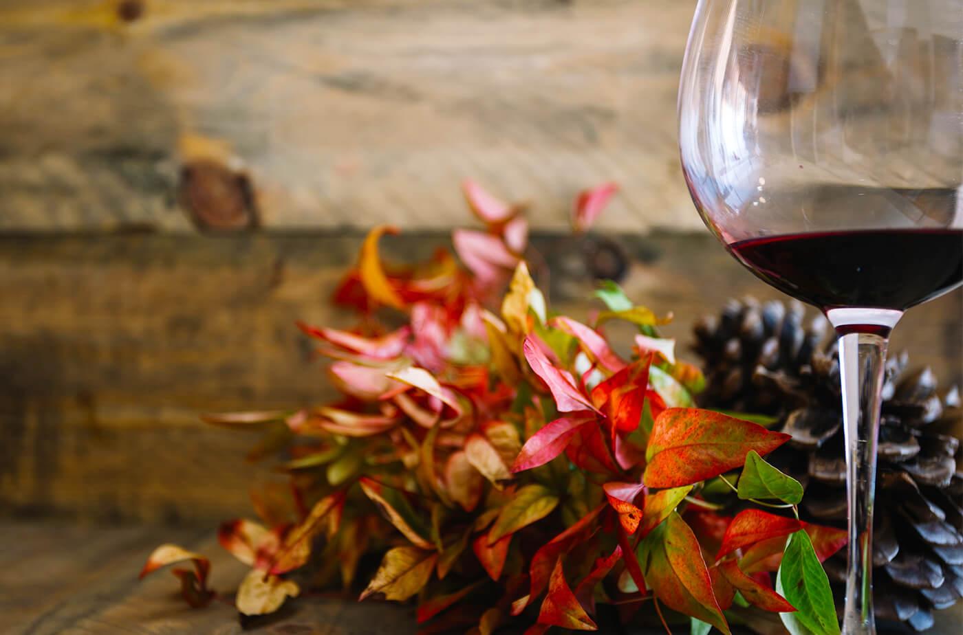 5 vins à déguster cet automne